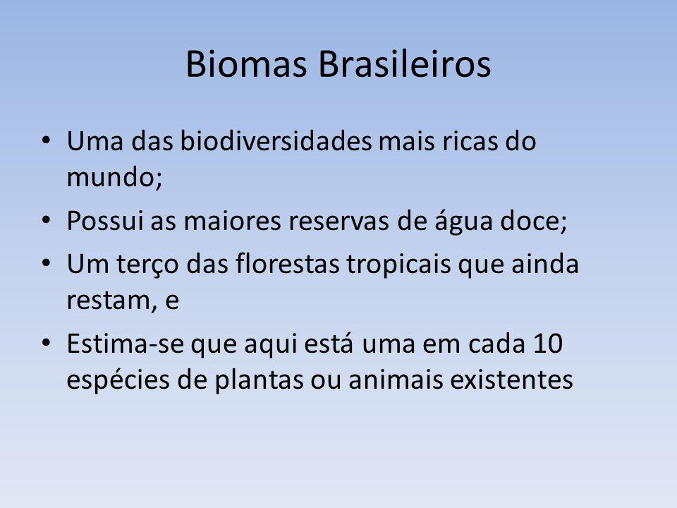 Biomas Brasileiros Uma das biodiversidades mais ricas do mundo; Possui as maiores reservas de água doce; Um terço das florestas tropicais que ainda re