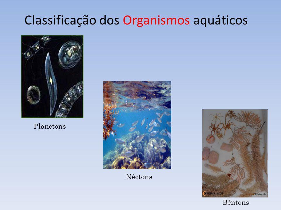Classificação dos Organismos aquáticos Plânctons Néctons Bêntons