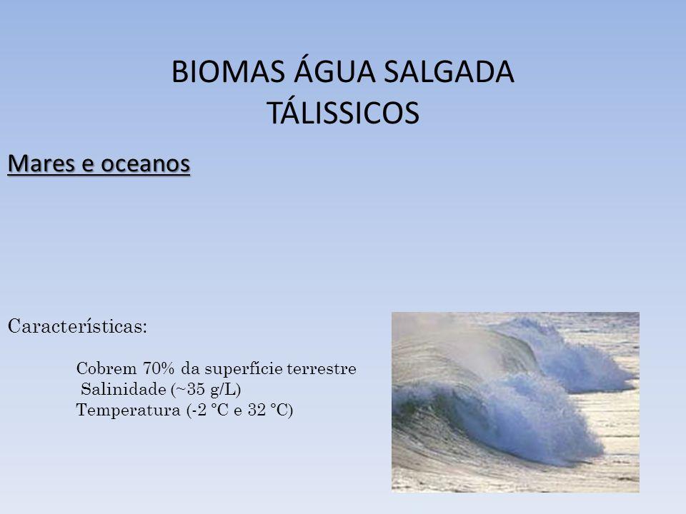 BIOMA FLORESTA AMAZÔNICA Ocupa a região Norte do Brasil (47% do território nacional) Maior floresta tropical do mundo; Estima-se em 20% de todas as espécies do mundo; Sistema hídrico (1/5 de toda a água doce do planeta)