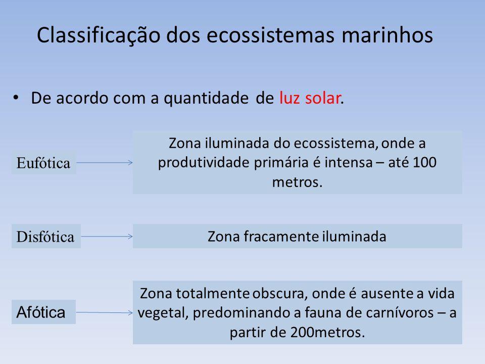 De acordo com a quantidade de luz solar. Eufótica Disfótica Afótica Zona iluminada do ecossistema, onde a produtividade primária é intensa – até 100 m