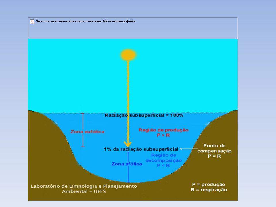 Curiosidade Mais da metade dos oceanos possuem profundidade superior a 3mil metros.