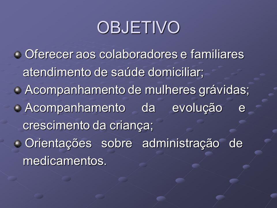 PRIMEIRA ETAPA Levantamento dos colaboradores; Formação de equipes e atribuições (treinamento); Organização do trabalho;
