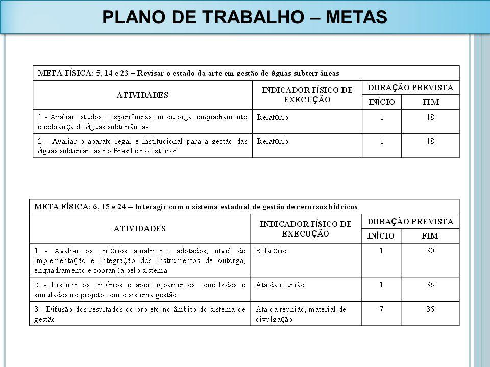PLANO DE TRABALHO – METAS