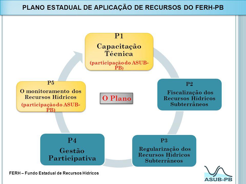 O Plano P1 Capacitação Técnica (participação do ASUB- PB ) P2 Fiscalização dos Recursos Hídricos Subterrâneos P3 Regularização dos Recursos Hídricos S
