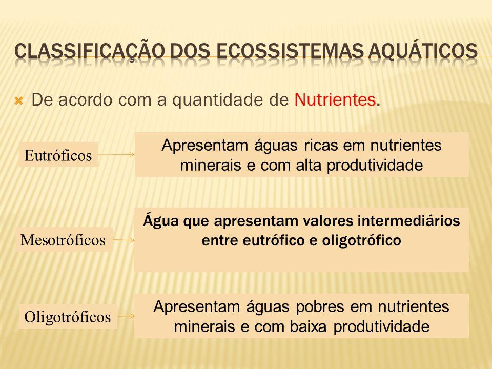 De acordo com a quantidade de Nutrientes. Eutróficos Mesotróficos Oligotróficos Apresentam águas ricas em nutrientes minerais e com alta produtividade