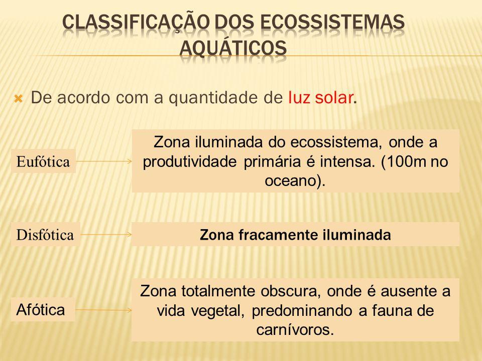 De acordo com a quantidade de luz solar. Eufótica Disfótica Afótica Zona iluminada do ecossistema, onde a produtividade primária é intensa. (100m no o