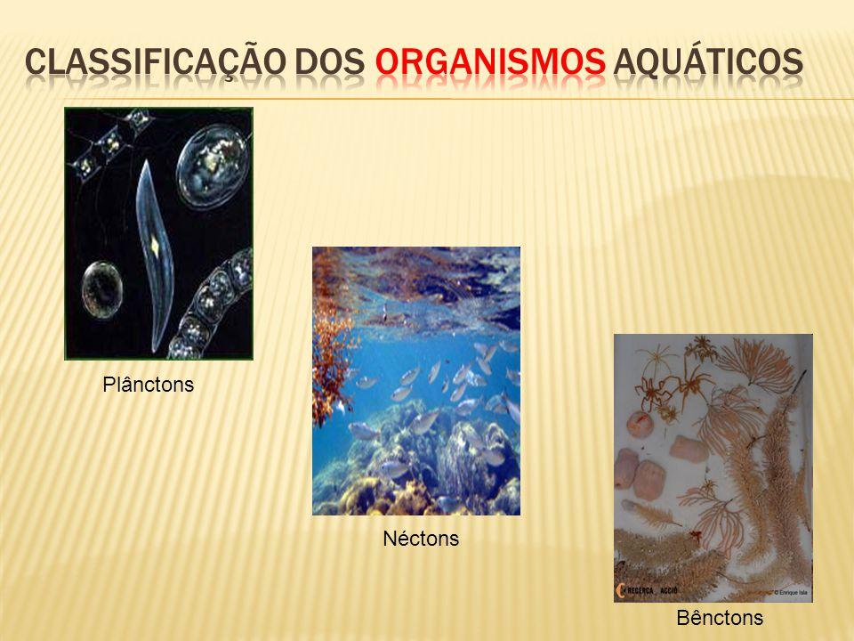 Plânctons Néctons Bênctons