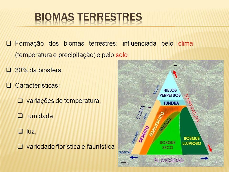 Formação dos biomas terrestres: influenciada pelo clima (temperatura e precipitação) e pelo solo 30% da biosfera Características: variações de tempera