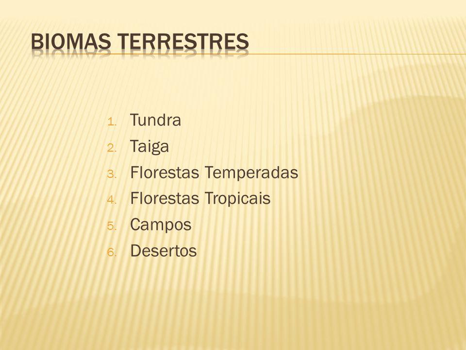 1. Tundra 2. Taiga 3. Florestas Temperadas 4. Florestas Tropicais 5. Campos 6. Desertos