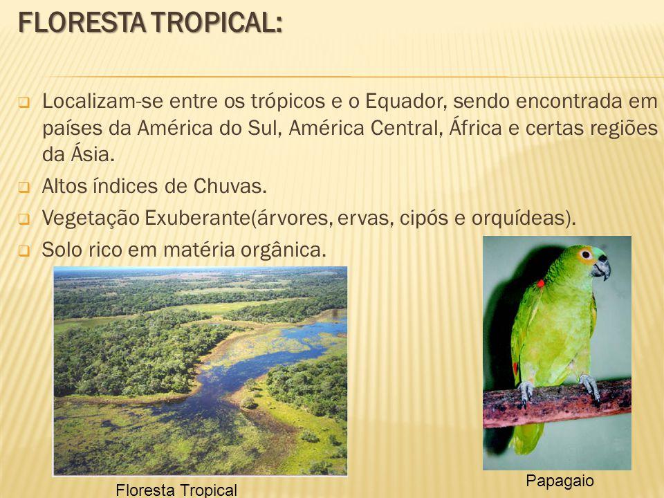 FLORESTA TROPICAL: Localizam-se entre os trópicos e o Equador, sendo encontrada em países da América do Sul, América Central, África e certas regiões