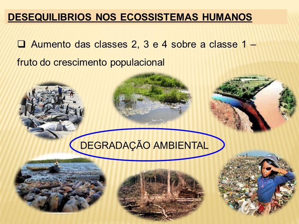 DESEQUILIBRIOS NOS ECOSSISTEMAS HUMANOS Aumento das classes 2, 3 e 4 sobre a classe 1 – fruto do crescimento populacional DEGRADAÇÃO AMBIENTAL