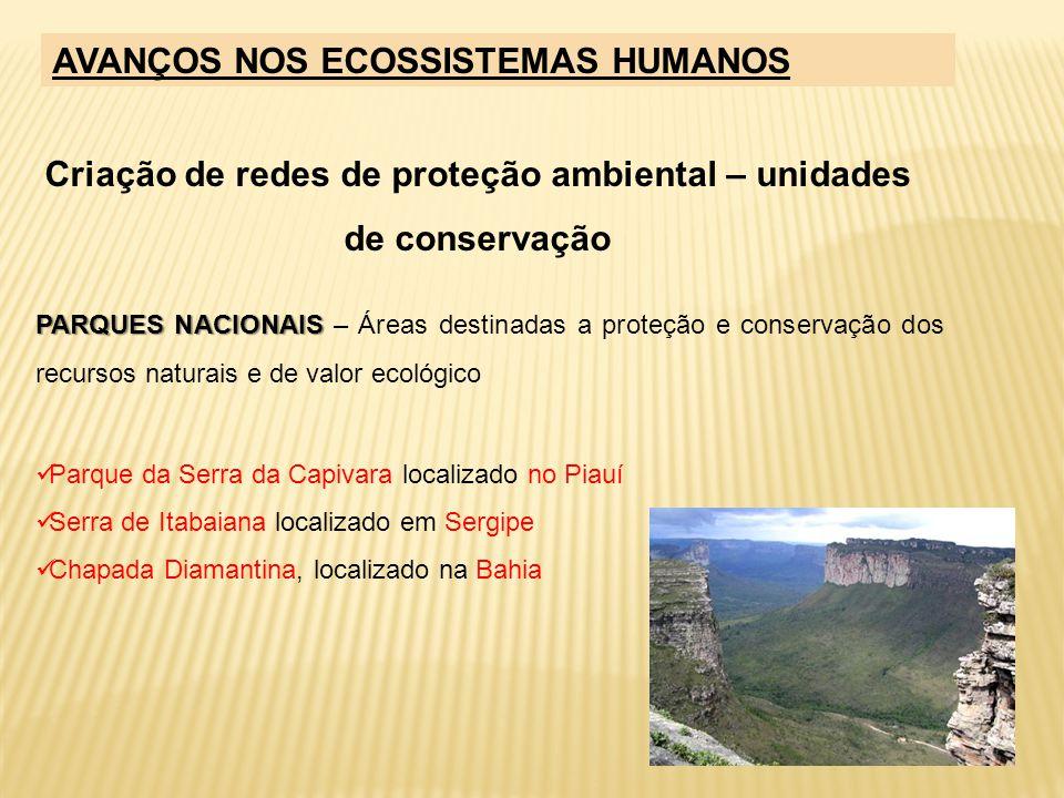 Criação de redes de proteção ambiental – unidades de conservação PARQUES NACIONAIS PARQUES NACIONAIS – Áreas destinadas a proteção e conservação dos r