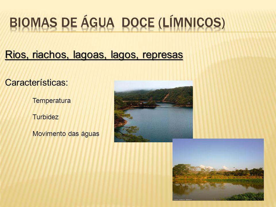 Rios, riachos, lagoas, lagos, represas Características: Temperatura Turbidez Movimento das águas
