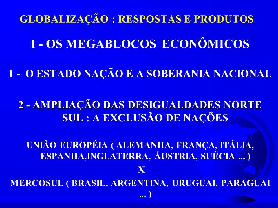 GLOBALIZAÇÃO : RESPOSTAS E PRODUTOS I - OS MEGABLOCOS ECONÔMICOS 1 - O ESTADO NAÇÃO E A SOBERANIA NACIONAL 2 - AMPLIAÇÃO DAS DESIGUALDADES NORTE SUL 2