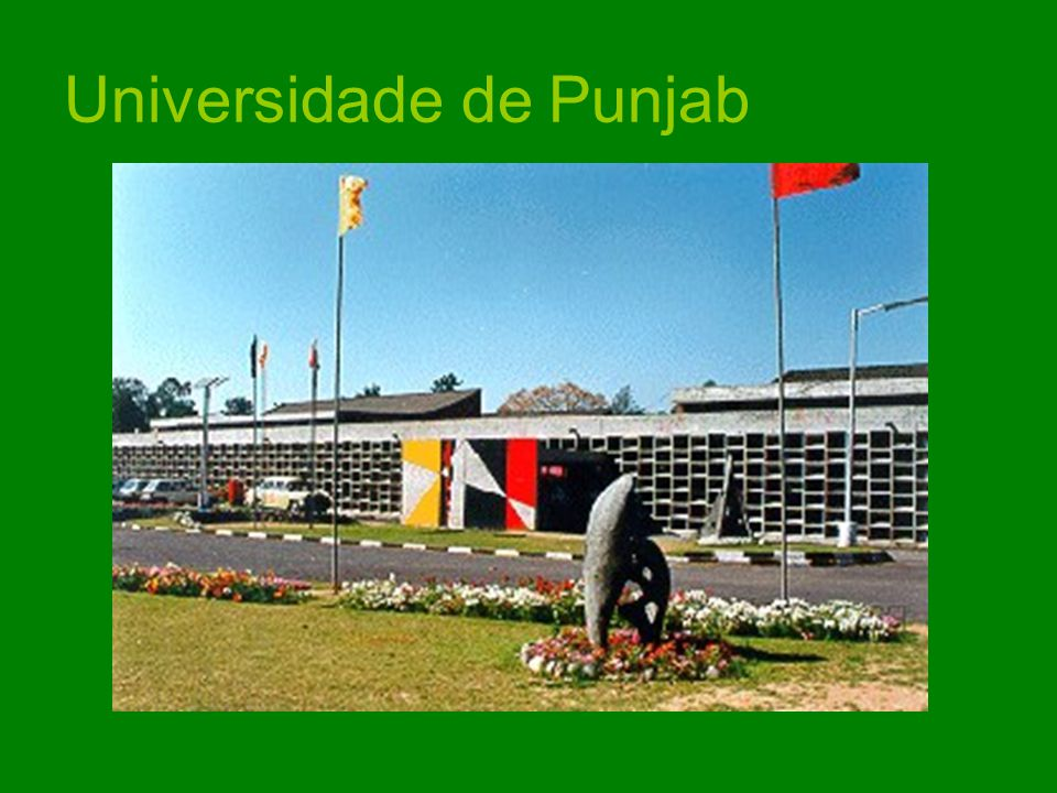Universidade de Punjab