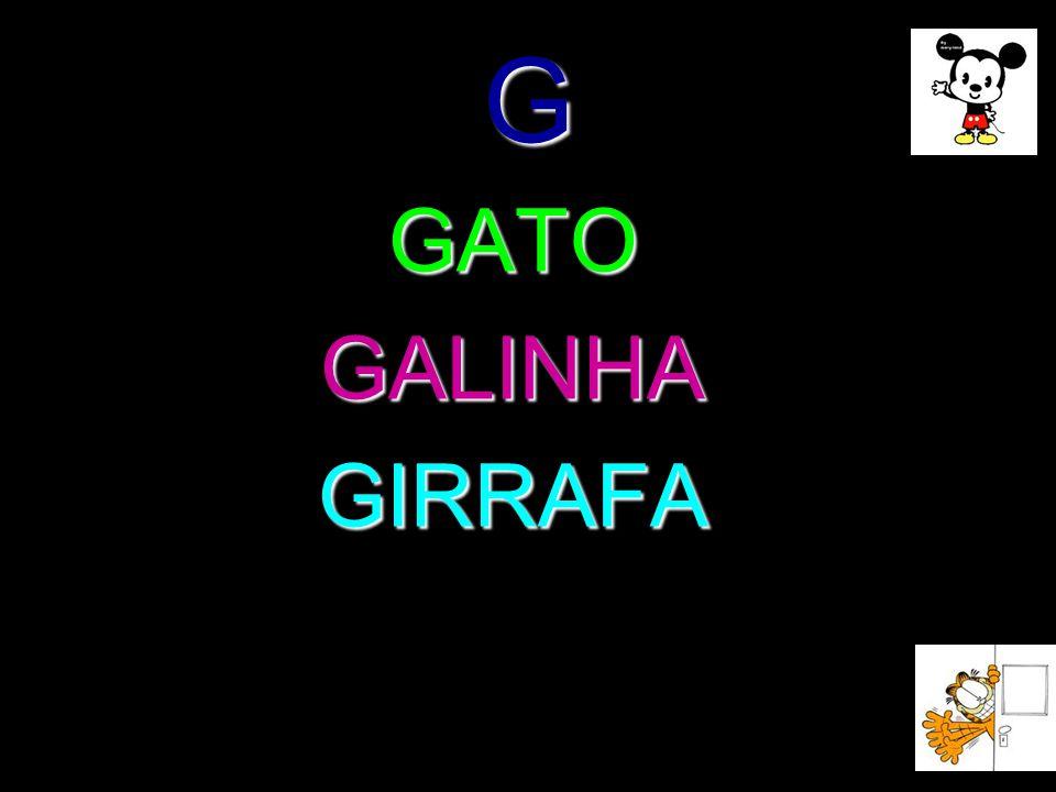 G GATOGALINHAGIRRAFA