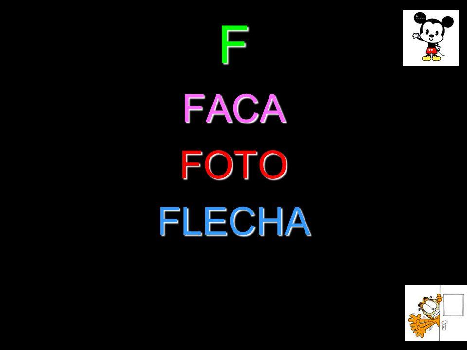 F FACAFOTOFLECHA