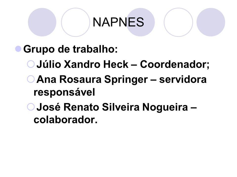 NAPNES Grupo de trabalho: Júlio Xandro Heck – Coordenador; Ana Rosaura Springer – servidora responsável José Renato Silveira Nogueira – colaborador.