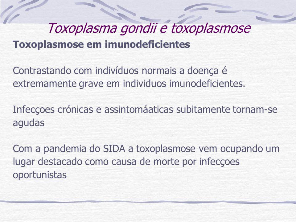 Toxoplasma gondii e toxoplasmose Toxoplasmose em imunodeficientes Contrastando com indivíduos normais a doença é extremamente grave em individuos imunodeficientes.