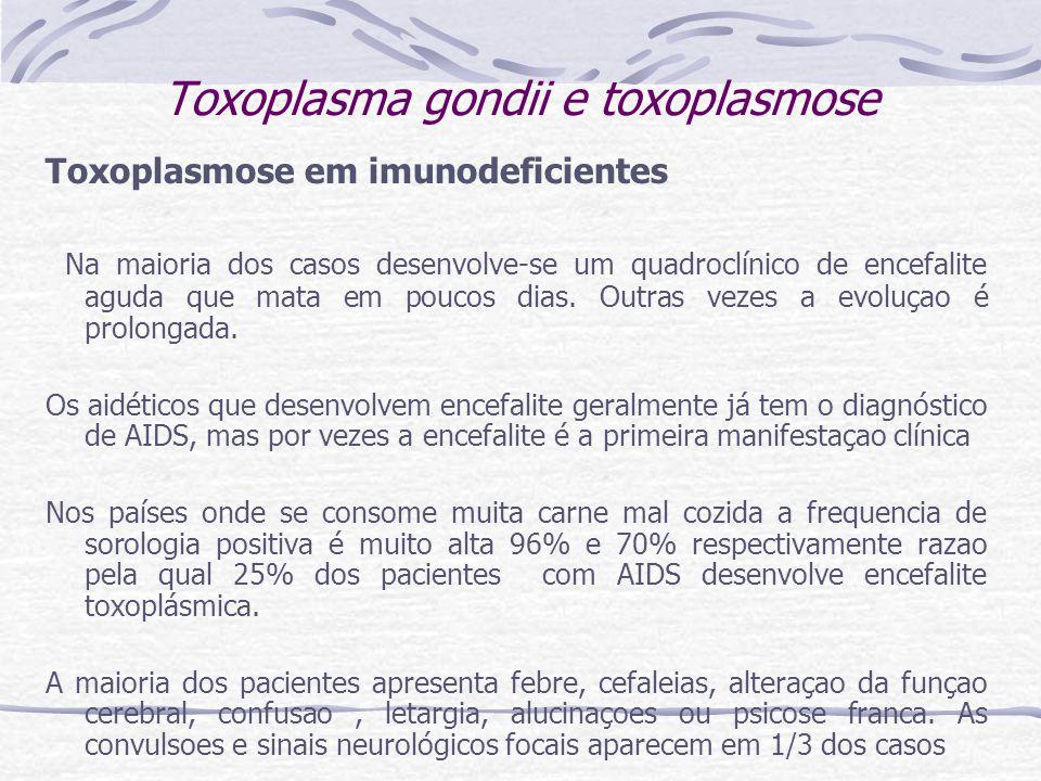 Toxoplasma gondii e toxoplasmose Toxoplasmose em imunodeficientes Na maioria dos casos desenvolve-se um quadroclínico de encefalite aguda que mata em poucos dias.