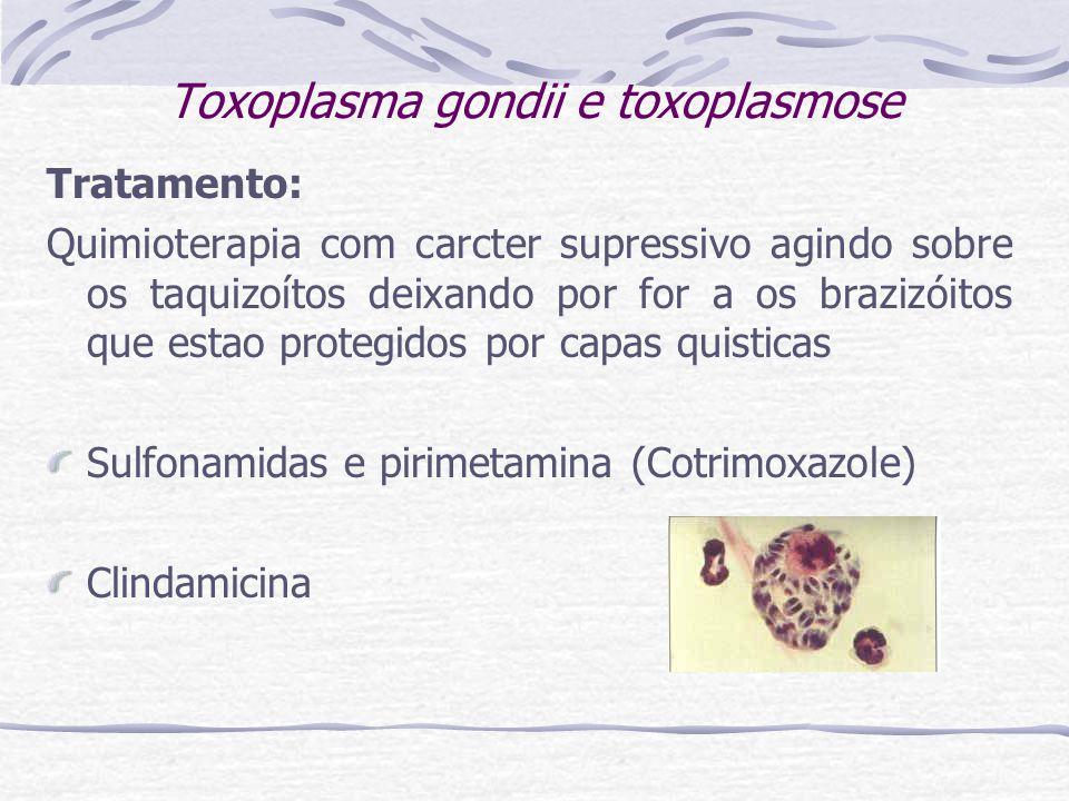 Toxoplasma gondii e toxoplasmose Tratamento: Quimioterapia com carcter supressivo agindo sobre os taquizoítos deixando por for a os brazizóitos que estao protegidos por capas quisticas Sulfonamidas e pirimetamina (Cotrimoxazole) Clindamicina