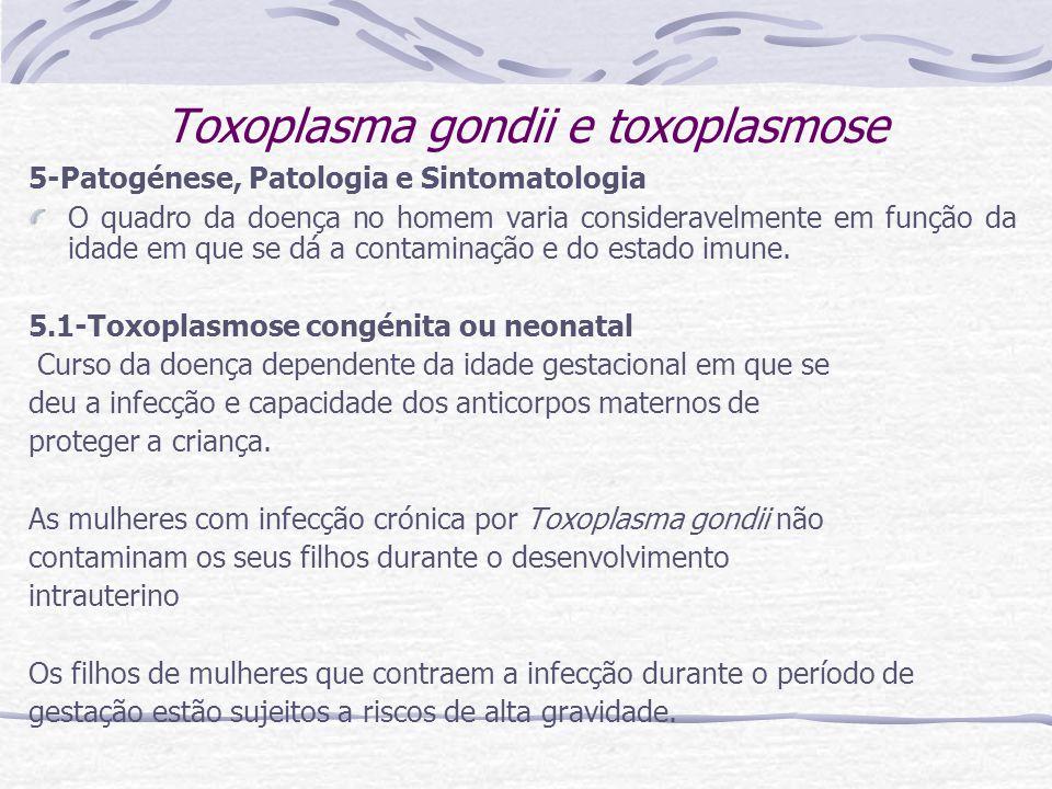 Toxoplasma gondii e toxoplasmose 5-Patogénese, Patologia e Sintomatologia O quadro da doença no homem varia consideravelmente em função da idade em que se dá a contaminação e do estado imune.