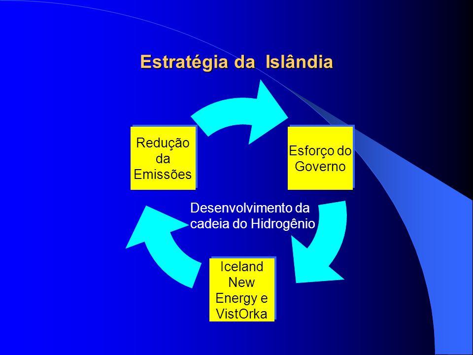 Principais Projetos da Islândia 2001 ECTOS-Project – Ecological City Transport System Project – Estações de abastecimento, motor elétrico – Sprint e Ônibus urbanos (2003) – Resultados (2005) 2004 Início do projeto NEW H SHIP –Identificar gargalos –Demonstrações, impactos –Políticas Globais