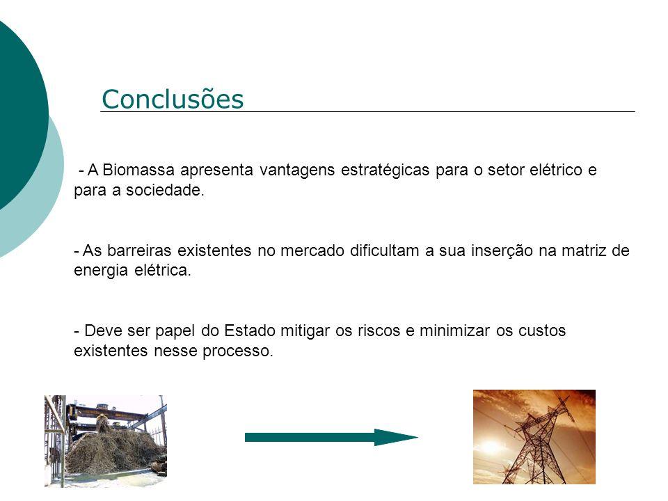 Conclusões - A Biomassa apresenta vantagens estratégicas para o setor elétrico e para a sociedade. - As barreiras existentes no mercado dificultam a s
