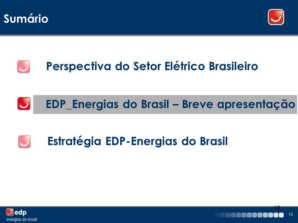 12 Sumário EDP_Energias do Brasil – Breve apresentação Perspectiva do Setor Elétrico Brasileiro Estratégia EDP-Energias do Brasil