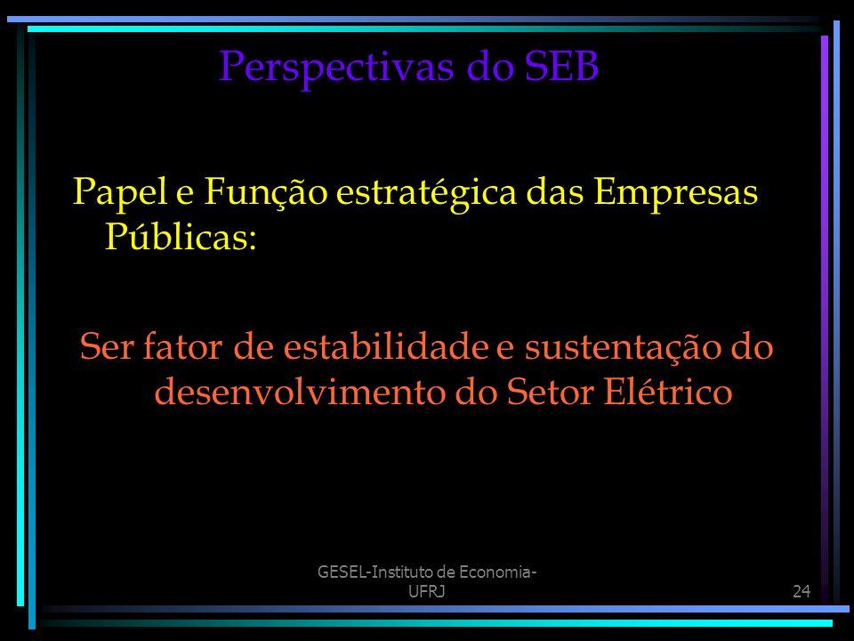 GESEL-Instituto de Economia- UFRJ24 Perspectivas do SEB Papel e Função estratégica das Empresas Públicas: Ser fator de estabilidade e sustentação do desenvolvimento do Setor Elétrico