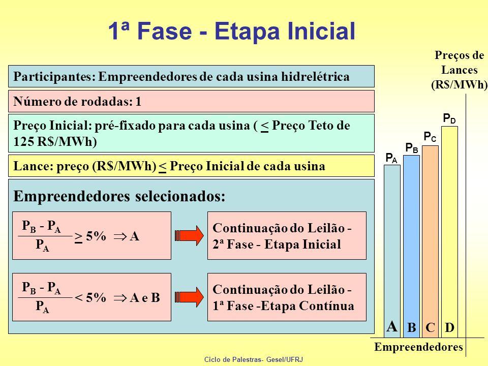 Empreendedores Preços de Lances (R$/MWh) PAPA B C D A PBPB PCPC PDPD Participantes: Empreendedores de cada usina hidrelétrica Número de rodadas: 1 Lan