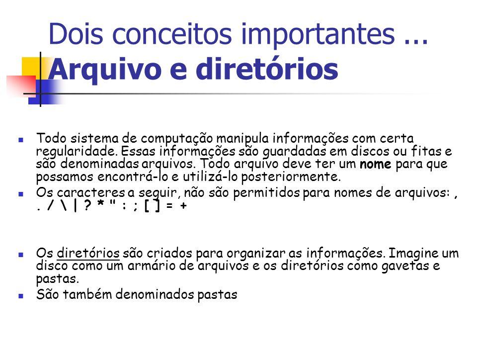 Dois conceitos importantes... Arquivo e diretórios Todo sistema de computação manipula informações com certa regularidade. Essas informações são guard