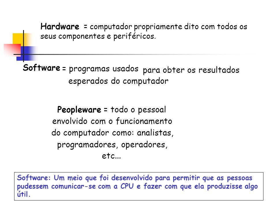 Hardware = computador propriamente dito com todos os seus componentes e periféricos. Software = programas usados para obter os resultados esperados do