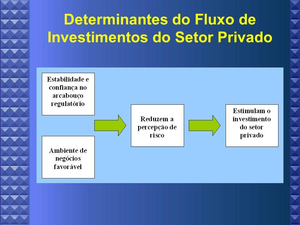 Determinantes do Fluxo de Investimentos do Setor Privado