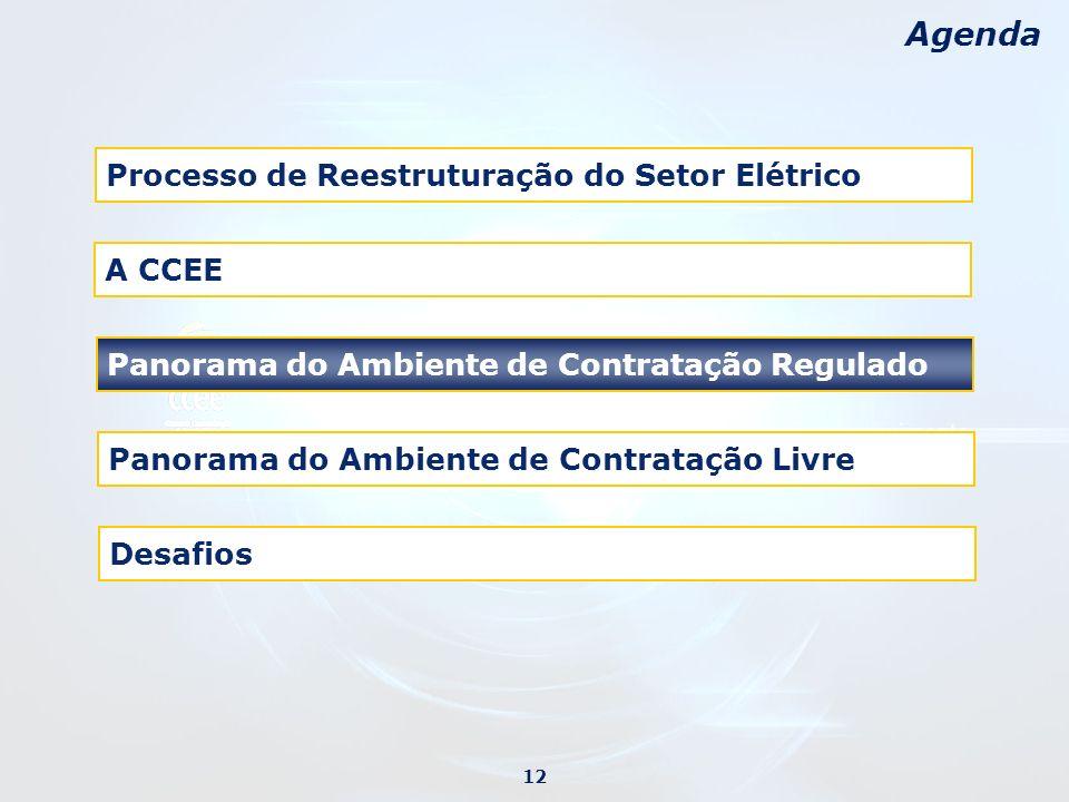 Desafios Agenda Processo de Reestruturação do Setor Elétrico Panorama do Ambiente de Contratação Regulado Panorama do Ambiente de Contratação Livre 12