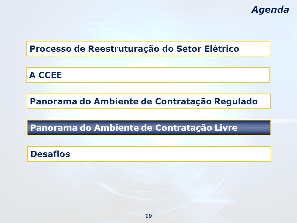 Desafios Agenda Processo de Reestruturação do Setor Elétrico Panorama do Ambiente de Contratação Regulado Panorama do Ambiente de Contratação Livre 19