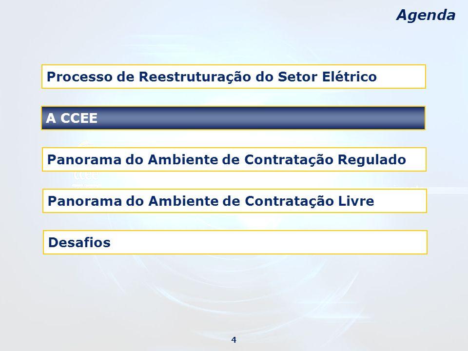 Desafios Agenda Processo de Reestruturação do Setor Elétrico Panorama do Ambiente de Contratação Regulado Panorama do Ambiente de Contratação Livre 4