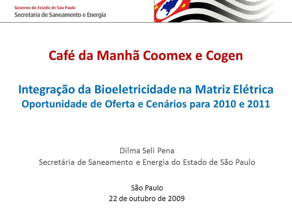 Café da Manhã Coomex e Cogen Integração da Bioeletricidade na Matriz Elétrica Oportunidade de Oferta e Cenários para 2010 e 2011 Dilma Seli Pena Secre