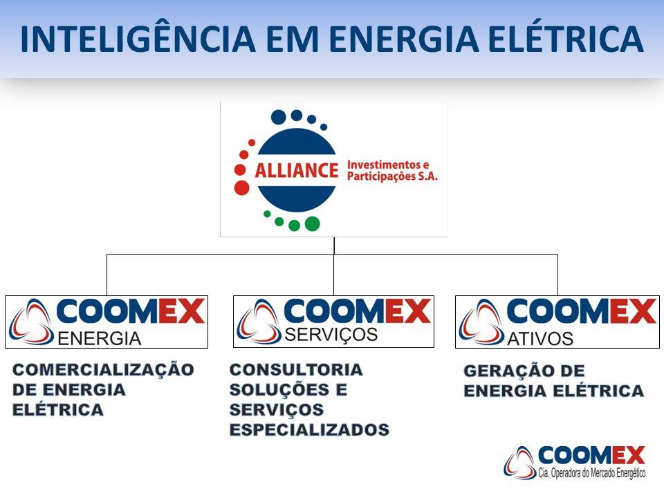 INTELIGÊNCIA EM ENERGIA ELÉTRICA