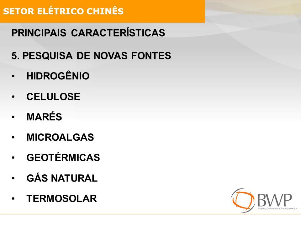 PRINCIPAIS CARACTERÍSTICAS 5. PESQUISA DE NOVAS FONTES HIDROGÊNIO CELULOSE MARÉS MICROALGAS GEOTÉRMICAS GÁS NATURAL TERMOSOLAR SETOR ELÉTRICO CHINÊS