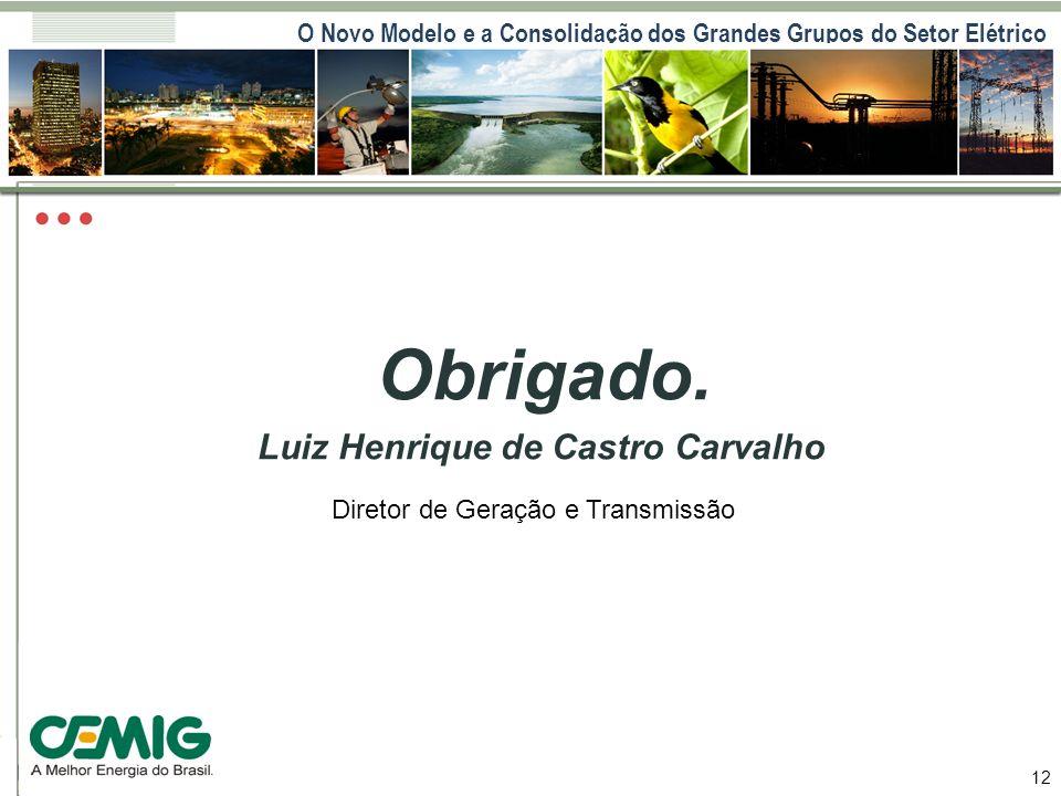 O Novo Modelo e a Consolidação dos Grandes Grupos do Setor Elétrico 12 Obrigado. Luiz Henrique de Castro Carvalho Diretor de Geração e Transmissão