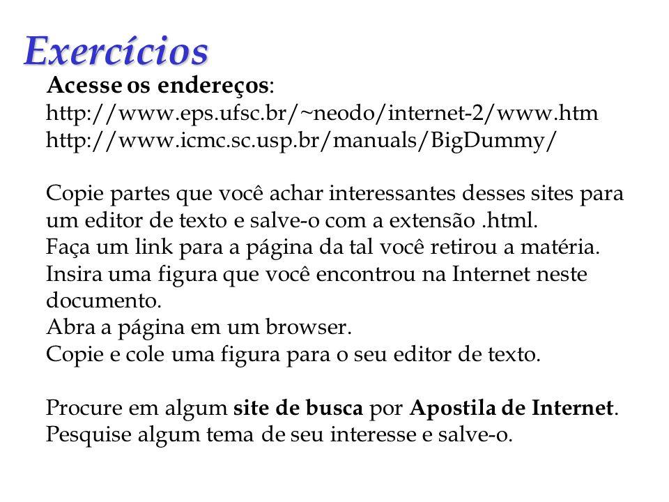 Exercícios Acesse os endereços : http://www.eps.ufsc.br/~neodo/internet-2/www.htm http://www.icmc.sc.usp.br/manuals/BigDummy/ Copie partes que você ac