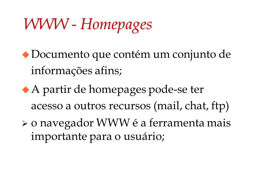 WWW - Homepages u Documento que contém um conjunto de informações afins; u A partir de homepages pode-se ter acesso a outros recursos (mail, chat, ftp