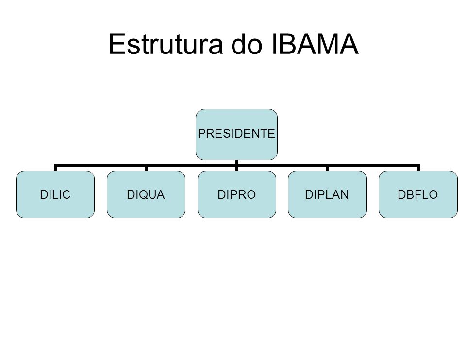 Estrutura do IBAMA PRESIDENTE DILICDIQUADIPRODIPLANDBFLO
