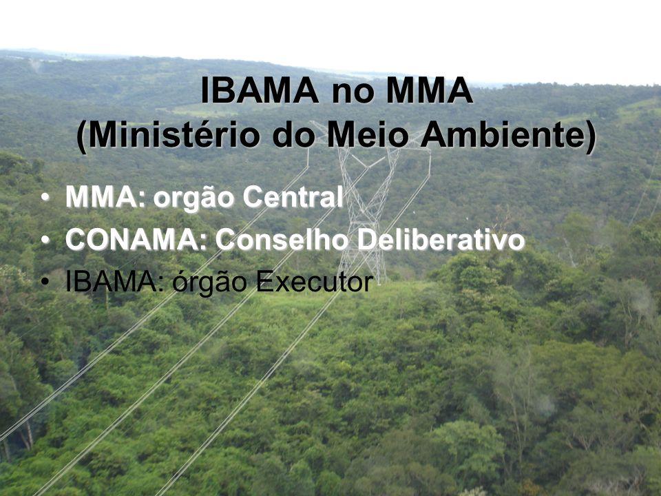 IBAMA no MMA (Ministério do Meio Ambiente) MMA: orgão CentralMMA: orgão Central CONAMA: Conselho DeliberativoCONAMA: Conselho Deliberativo IBAMA: órgão Executor