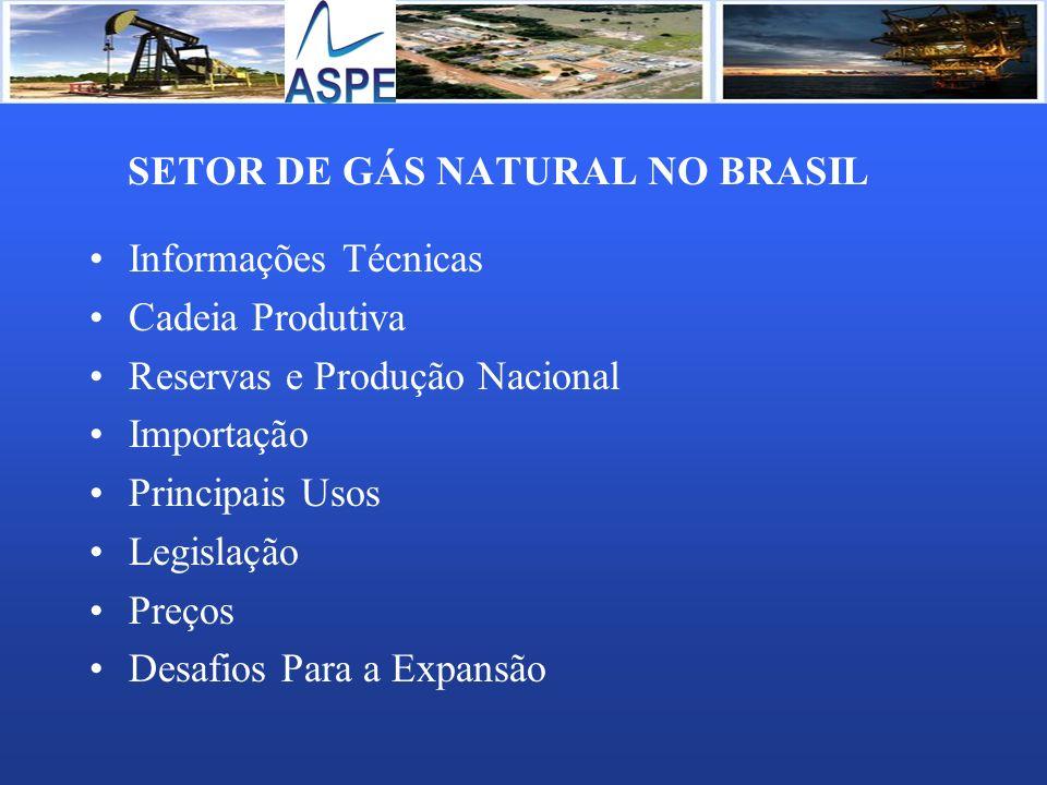SETOR DE GÁS NATURAL NO BRASIL Informações Técnicas Cadeia Produtiva Reservas e Produção Nacional Importação Principais Usos Legislação Preços Desafio