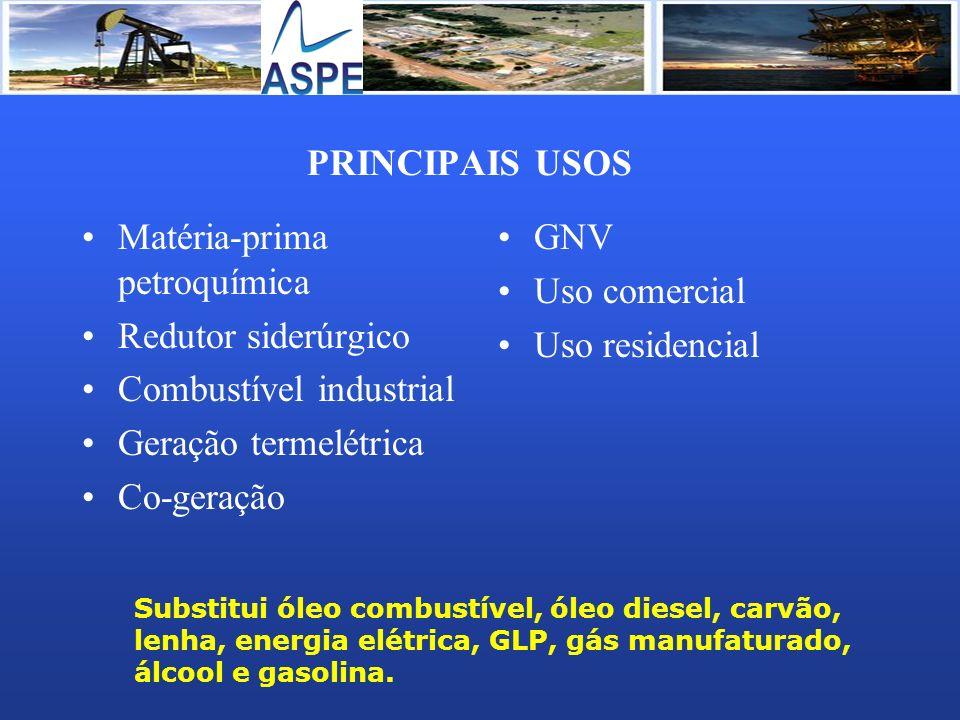 PRINCIPAIS USOS Matéria-prima petroquímica Redutor siderúrgico Combustível industrial Geração termelétrica Co-geração GNV Uso comercial Uso residencia
