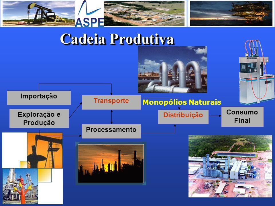 Cadeia Produtiva Transporte Processamento Distribuição Consumo Final Exploração e Produção Importação Monopólios Naturais