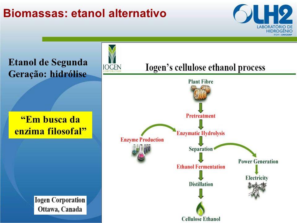 Biomassas: etanol alternativo Etanol de Segunda Geração: hidrólise Em busca da enzima filosofal