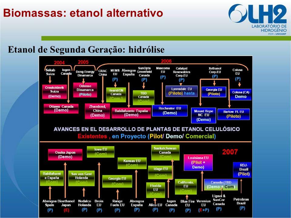 Biomassas: etanol alternativo Etanol de Segunda Geração: hidrólise